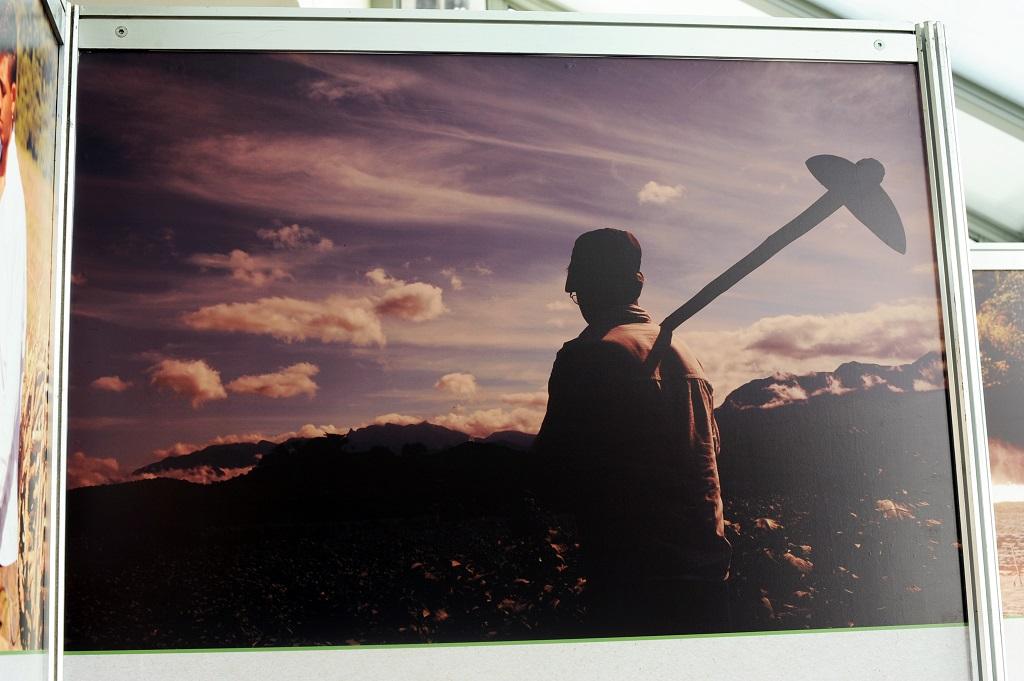 Fotografia de um rapaz de costas e uma pá em seu ombro direito
