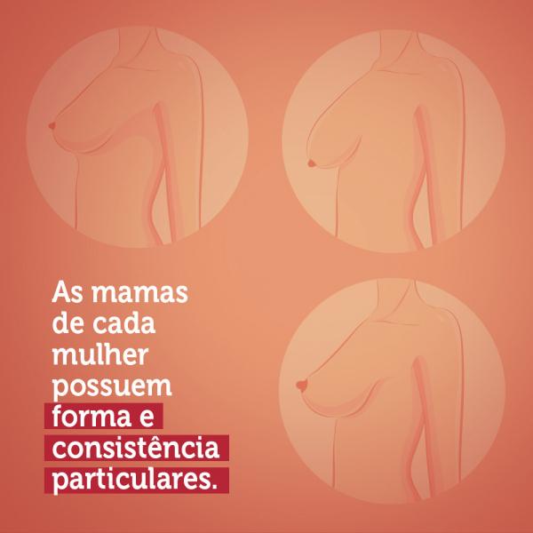 """Imagem rosa, com três imagens de mama e o texto """"As mamas de cada mulher possuem forma e consistência particulares"""""""