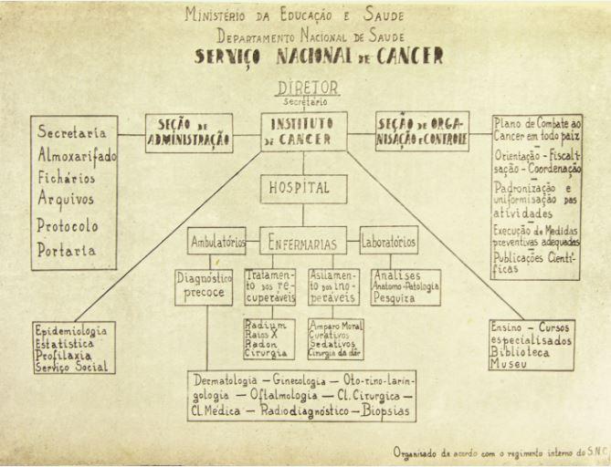 Organograma do Serviço Nacional de Câncer