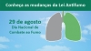 Uma imagem de céu azul com um pulmão com dois lados: o cinza representa o antes e o verde o depois da Lei de Ambiente Livres do Tabaco.