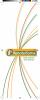 Capa com o fundo branco e linhas verdes, amarelas e laranjas. No centro da capa está uma ilustração de um pulmão e uma faixa verde e amarela com o título: Mesotelioma. Você conhece essa doença?
