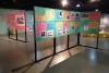 Murais nas cores verde e rosa estão dispostos em um salão com fotografias à mostra para o público visitante da exposição